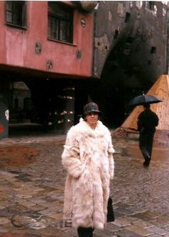 Peleteria Galante - Zorro Tundra Antes